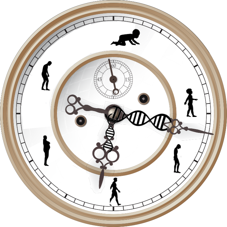 Clock face silhouette only